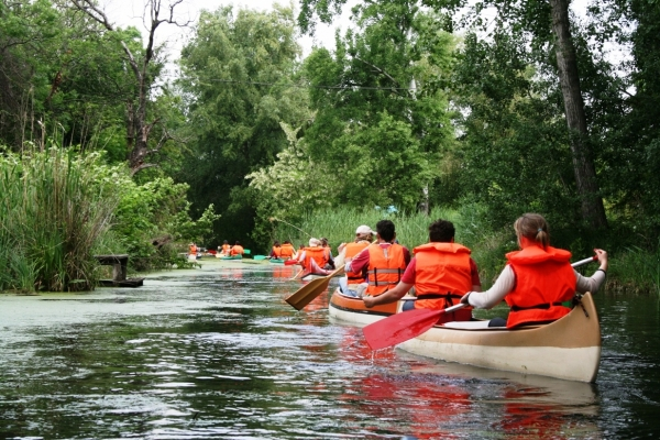 Boat trips and canoe tours on the Small Danube